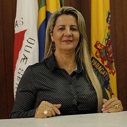 Marli Ribeiro - Vereador da Câmara de Paracatu-MG